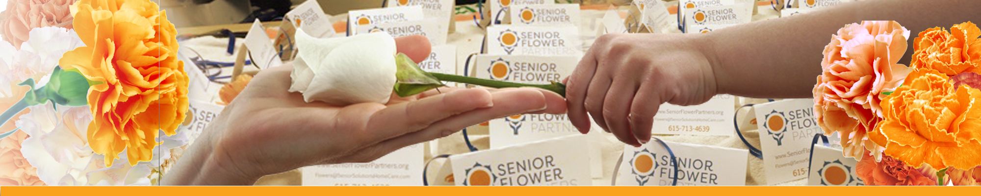 senior flower partners homepage slider